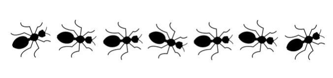 ants-clipart-7